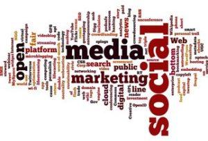 social seo e feed